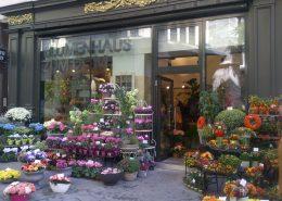 Blumenhaus Portal